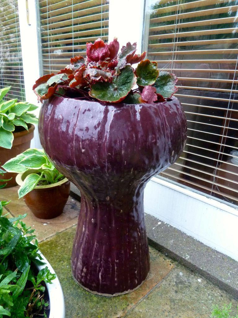 Planter tall in garden