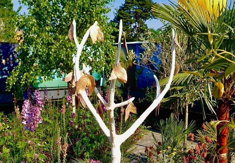 Tree of Hope - Top of Tree